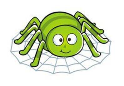 蜘蛛池是什么
