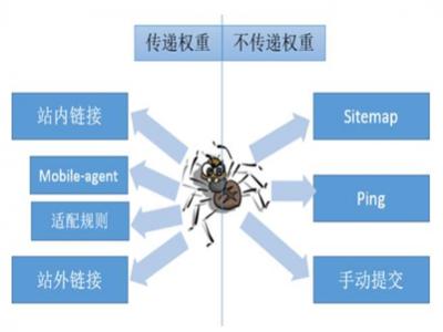 seo优化搜索引擎蜘蛛的抓取