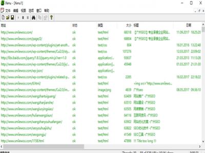 Xenu检测seo工具