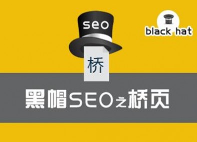 黑帽seo之桥页