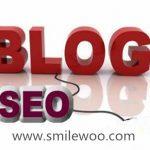 新媒体seo博客如何优化,优化个人seo博客网站需要知道哪些问题?